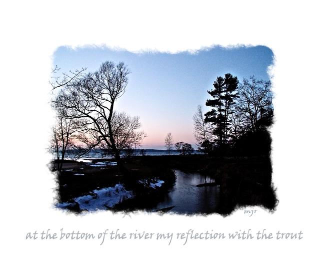reflectionsoftrouthaiga